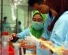 Berikut Beberapa Kendala Soal Penelitian Yang Ada Di Indonesia