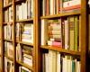 Dari Cendana Ke Tangsel Urus Perpustakaan