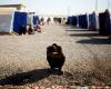 Austria Akan Perketat Aturan Bagi Pencari Suaka Yang Ditolak