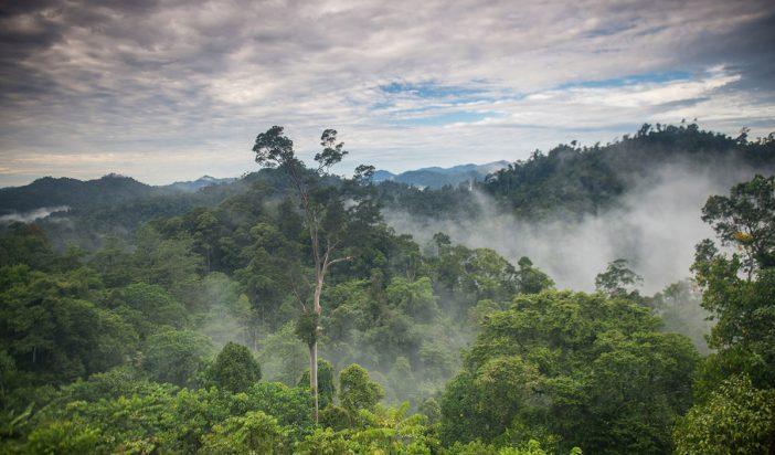 Aceh di Harapkan Dapat Penuhi Pengurangan Emisi Gas Rumah Kaca Di Indonesia