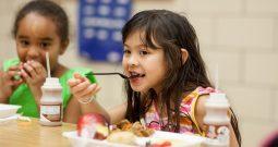 Selamatkan Generasi Muda Berikan Makanan Sehat di Masa Keemasan