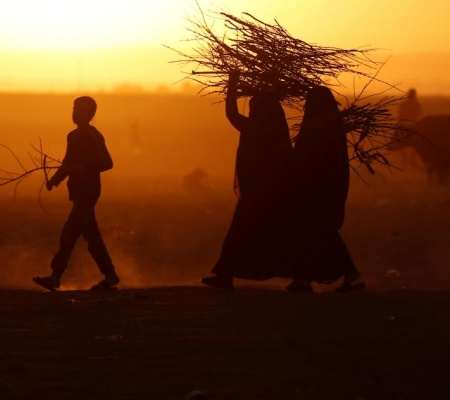 People Displaced By Fighting In And Around Mosul Carry A Firewood At A Boundary Of Kurdish Territory Near Bashiqa