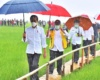 Kerumunan Massa Jokowi di NTT Tak Bisa Disanksi, Ini Alasannya