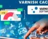 Varnish Software capai performa CDN video dekati 400Gbps